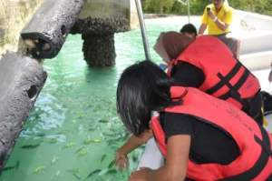 island hopping langkawi